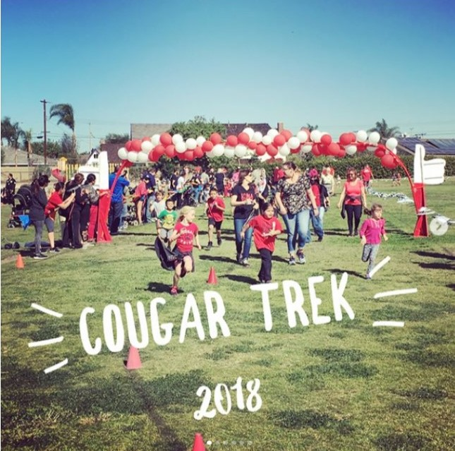 start line of Cougar Trek 2018